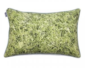 Decorative pillow  Grass 40x60 cm